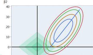 Elastic Net und Lasso: Lassen Sie in unübersichtlichen Situationen Software statistische Modelle finden