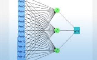 Mastering JMP: Vorhersagemodellierung - Neuronale Netze