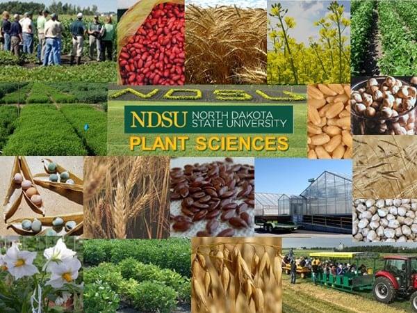 NDSU Planet Sciences