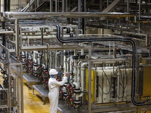 Dairygold: Factory