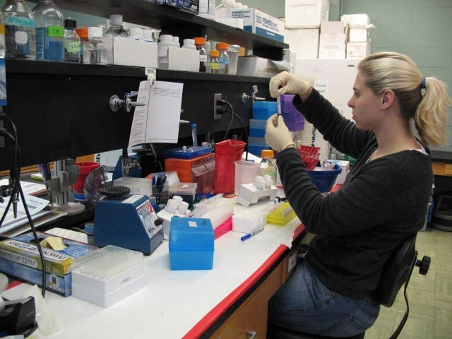 Researcher in laboratory