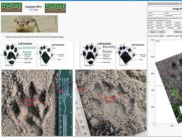 Fit for Prasi footprints