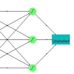 Data mining – neural networks