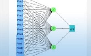 Discovering and Predicting Patterns Using JMP Pro Neural Network Models