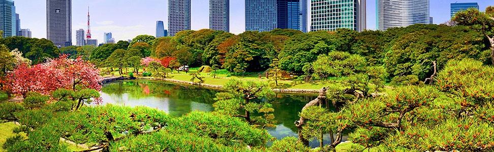 Tokyo skyline and park