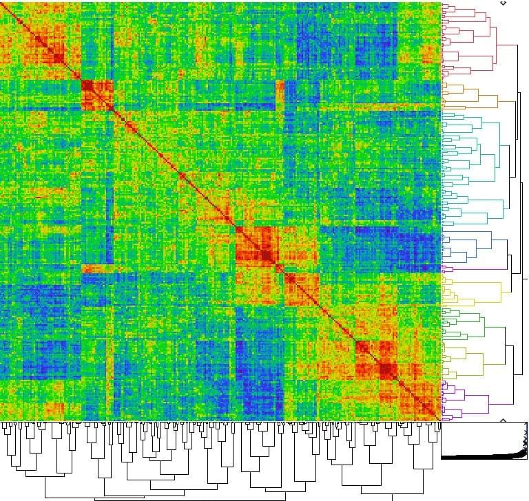 Genetic distance matrices