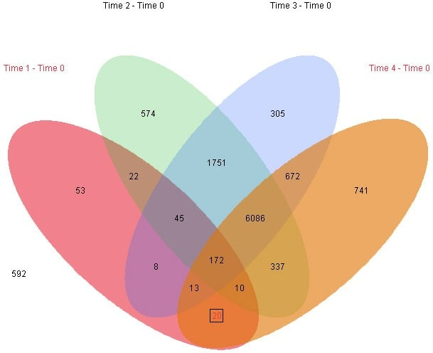 Visualize shared patterns with multiway Venn diagrams.