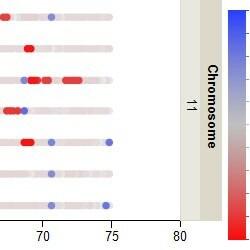 Copy number segmentation