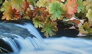 BASF Waterfall