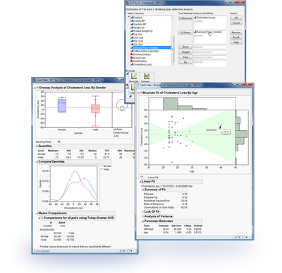 Statistics with JMP screenshot