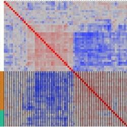 Cluster heat plots