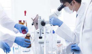 NEW! 医薬品の品質、有効性、安全性を担保する