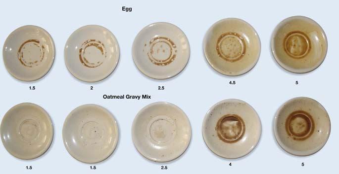 BASF Egg Oatmeal Experiment