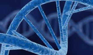 帝国理工学院合成生物学加速器SynbiCITE
